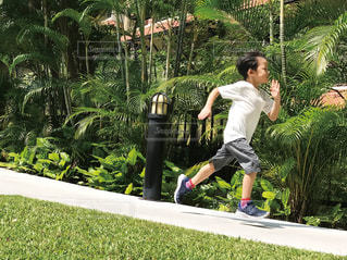 新緑の中を走る男の子の写真・画像素材[2107566]