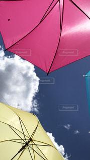 黄色い傘の写真・画像素材[1862593]