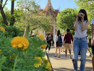 建物,カメラ,屋外,黄色,お花,観光,樹木,人物,人,旅行,タイ,お寺,通り,草木,体験,休暇,学び,異文化,触れる