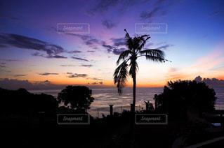 ヒルトンバリから見えた朝日🌴🌄の写真・画像素材[1864734]