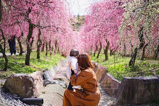 男と岩の上に座っている女性の写真・画像素材[1862701]