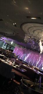 風景,食事,ディナー,木,ピンク,都会,オシャレ,食器,ロマンチック,レストラン,お洒落,白樺,都内,ペニンシュラ,最上階,ペニンシュラ東京