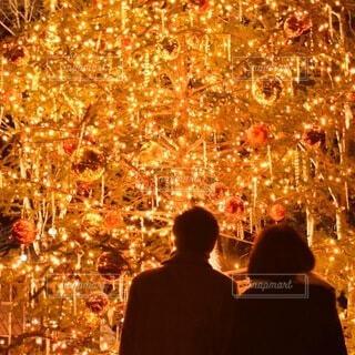 クリスマスの夜の写真・画像素材[4008393]