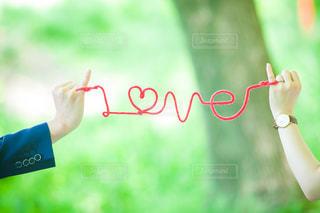 LOVEの写真・画像素材[1872038]