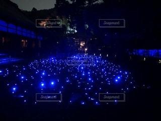 青の光の写真・画像素材[1875710]