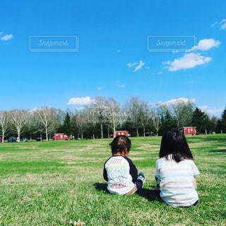 花,屋外,青空,後ろ姿,草,人物,人,後姿,赤ちゃん,こども,幼児,快晴,遊び場,景観