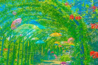 風景,空,公園,花,絶景,傘,屋外,アート,山,花びら,鮮やか,庭園,噴水,絵画,横浜,カラー,ガーデン,スケッチ,図面
