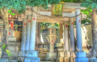 自然,風景,神社,きれい,鳥居,癒し