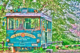 風景,森林,屋外,きれい,景色,樹木,癒し,旅行,バス,鉄道