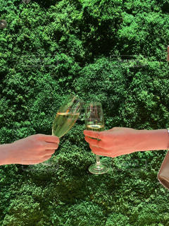 ワインを一杯持つ手の写真・画像素材[3049941]