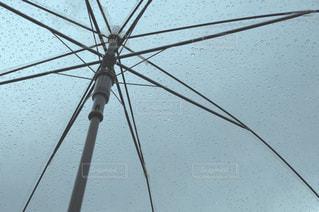 傘の写真・画像素材[276735]