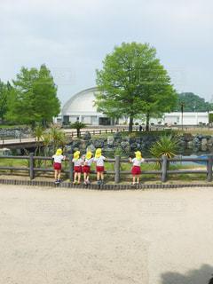 自然,公園,木,後ろ姿,池,背中,体操服,遠足,子供達,カラー帽子,カブトガニ博物館