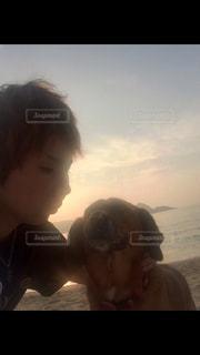 犬,自然,海,ビーチ,砂浜,夕陽,南の島