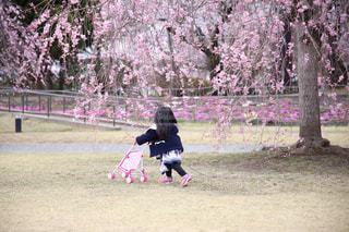 楽しい公園の写真・画像素材[2130446]