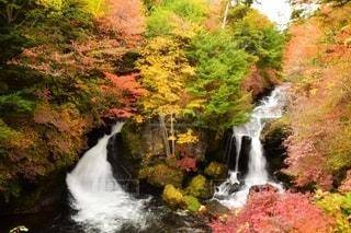 栃木の観光地の写真・画像素材[2513412]