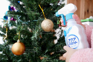 クリスマスツリーの掃除の写真・画像素材[2797948]