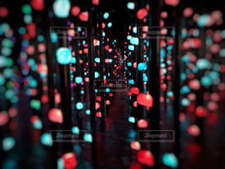 光の向こうの写真・画像素材[2800979]