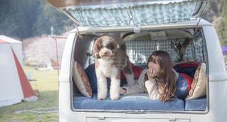 愛犬とキャンプの写真・画像素材[2055994]