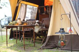 のんびりキャンプの写真・画像素材[2071980]