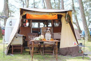 愛犬とキャンプの写真・画像素材[2367066]