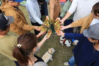 ピクニック,キャンプ,パーティー,ホットドッグ,肉汁,アンバサダー,キャンプご飯,ジョンソンヴィル,johnsonville,ホットドッグパーティー