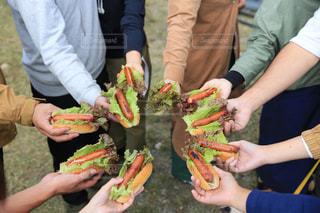 ピクニック,パーティー,ホットドッグ,肉汁,アンバサダー,キャンプご飯,ジョンソンヴィル,johnsonville,ホットドッグパーティー