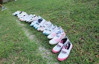 運動靴の写真・画像素材[83075]