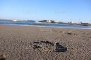 海,屋外,休日,フィルム,フィルム写真,フィルムフォト