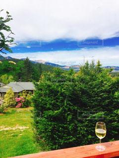 自然,空,雲,山,ワイン,グラス,乾杯,ドリンク,ニュージーランド,NZ,白ワイン,草木,別荘