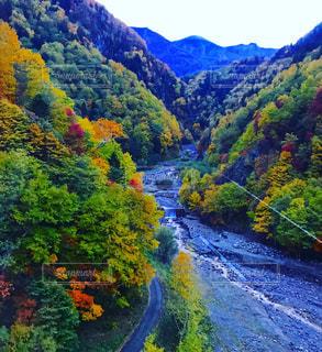 黒岳ロープウェイからの景色です♡の写真・画像素材[2511006]