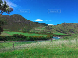 水の体の隣の丘の中腹のクローズアップの写真・画像素材[4408466]