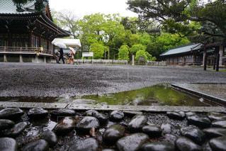 雨,水,水たまり,梅雨,天気,雨の日