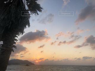 風景,空,夕日,屋外,太陽,ビーチ,雲,夕焼け,夕暮れ,水面,海岸,光,ヤシの木,冬の空