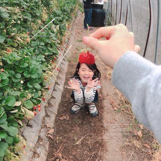 庭に立っている小さな男の子の写真・画像素材[2078360]