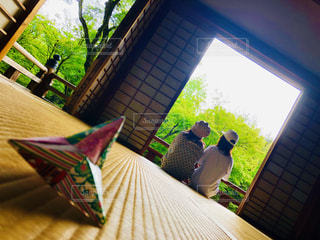 家族,風景,京都,緑,親子,後ろ姿,もみじ,樹木,人物,背中,人,畳,寺,折り紙,草木,ふすま