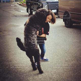 犬,動物,相撲,男の子,わんちゃん,クロ,ワンちゃん,すもう