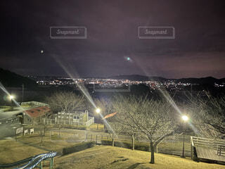 空,公園,夜,夜景,樹木,月,明るい,景観