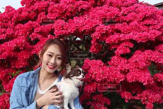 つつじの花を持つ木の前に立っている愛犬とわたしの写真・画像素材[2704163]