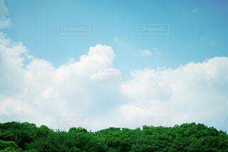 夏の空と雲の写真・画像素材[2431215]