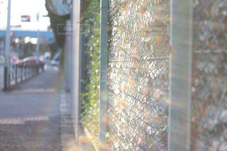 光を捉えるの写真・画像素材[2673282]
