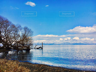 琵琶湖の写真・画像素材[437096]