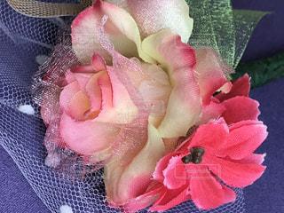 〜綺麗な花をいつまでも〜ドライフラワーフォト♬︎の写真・画像素材[2814509]