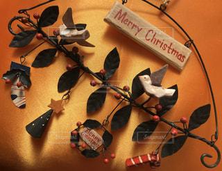 今年もこの季節!クリスマスフォト☆の写真・画像素材[2827351]