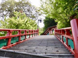 祐徳稲荷神社の写真・画像素材[2157405]
