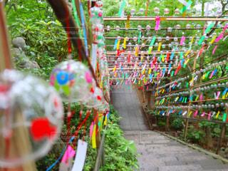 風鈴祭りの写真・画像素材[2350715]