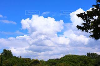 秋の空、夏の忘れ物の写真・画像素材[2425918]