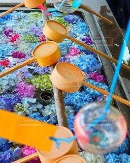 神社の花手水と風鈴の写真・画像素材[3398477]