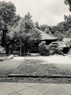 日本,和風,フィルム,寺,ひっそり,歴史,古風,フィルム写真,フィルムフォト