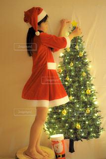 クリスマスの準備中?の写真・画像素材[2164633]