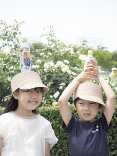 美味しいジュースの写真・画像素材[2216589]